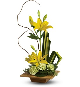 Teleflora's Bamboo Artistry in West Bend WI, Bits N Pieces Floral Ltd