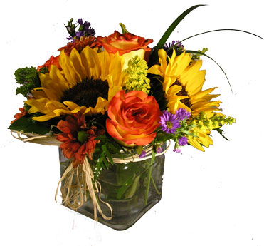Fielding Fall in Newport News VA, Pollards Florist