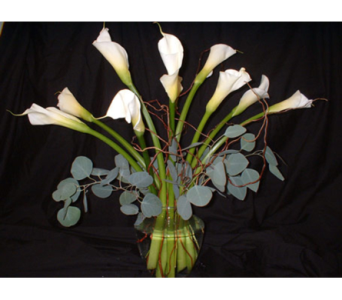White Calla Lily Bouquet in Dallas TX, Z's Florist