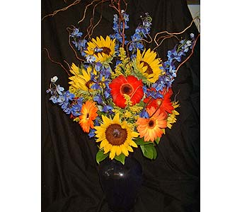Blue Sunshine in Dallas TX, Z's Florist