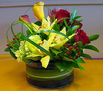 Contemporary & Colorful - Malio''s in Silvermill Plaza FL, Buds, Blooms & Beyond