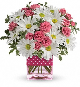 Teleflora's Polka Dots and Posies in San Diego CA, <i><b>Edelweiss Flower Salon  858-560-1370</i></b>