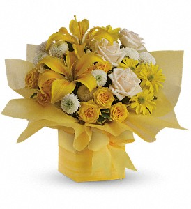 Teleflora's Sunshine Surprise Present in Santa Claus IN, Evergreen Flowers & Decor