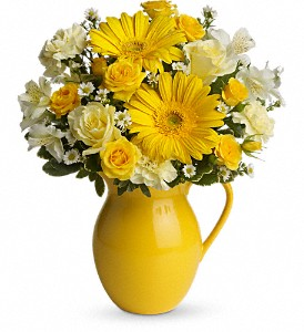Teleflora's Sunny Day Pitcher of Cheer in Redwood City CA, A Bed of Flowers