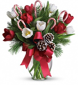 By Golly It's Jolly in Tuscaloosa AL, Pat's Florist & Gourmet Baskets, Inc.