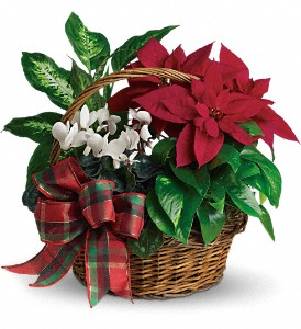Holiday Homecoming Basket in East Providence RI, Carousel of Flowers & Gifts