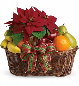 Fruit and Poinsettia Basket in New York NY, Fellan Florists Floral Galleria