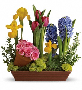Spring Favorites in Oakland MD, Green Acres Flower Basket