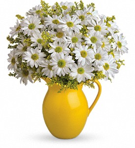 Teleflora's Sunny Day Pitcher of Daisies in Salem MA, Flowers by Darlene/North Shore Fruit Baskets