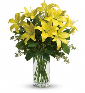 Teleflora's Lily Sunshine in Mooresville NC, All Occasions Florist & Gifts<br>704.799.0474