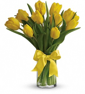 Sunny Yellow Tulips in Gothenburg NE, Ribbons & Roses