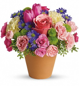 Spring Sonata in Newark CA, Angels 24 Hour Flowers<br>510.794.6391