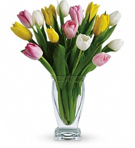 Teleflora's Tulip Treasure in Gautier MS, Flower Patch Florist & Gifts