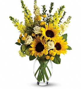 Here Comes The Sun by Teleflora in Boston MA, Exotic Flowers