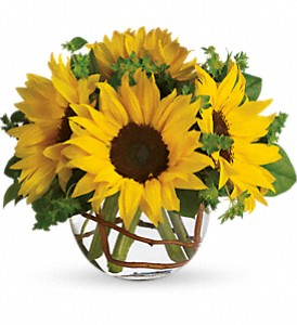 Sunny Sunflowers in Fairfield CA, Flower Basket
