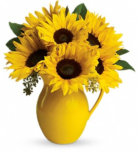 Sunny Day Pitcher of Sunflowers at The Glidden Campus Florist in DeKalb - Call to order: (815) 758-4455 / (800) 353-8222