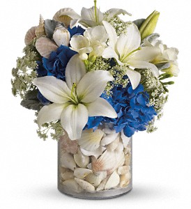 Everything's Beachy by Teleflora in Columbia Falls MT, Glacier Wallflower & Gifts