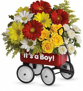 Baby's Wow Wagon by Teleflora - Boy in Lewiston ME, Val's Flower Boutique, Inc.