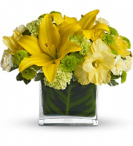 Oh Happy Day by Teleflora in Norwalk CT, Bruce's Flowers & Greenhouses