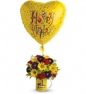 Teleflora's Hooray for Birthday in Amherst & Buffalo NY, Plant Place & Flower Basket