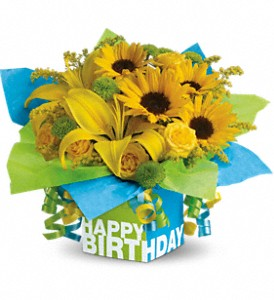 Teleflora's Sunny Birthday Present in Auburn IN, The Sprinkling Can