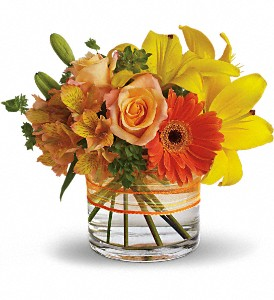 Sunny Siesta in Fredericksburg VA, Finishing Touch Florist