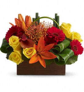 Teleflora's Bamboo Getaway in Holladay UT, Brown Floral