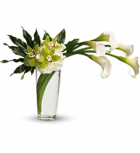 Moondance in Wellington FL, Wellington Florist