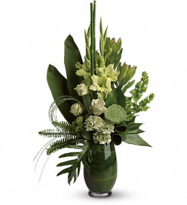 Limelight Bouquet in Waterbury CT, The Orchid Florist