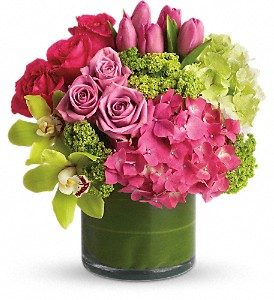 New Sensations in Austintown OH, Crystal Vase Florist