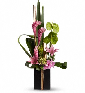 Now and Zen in Rochester NY, Young's Florist of Giardino Floral Company