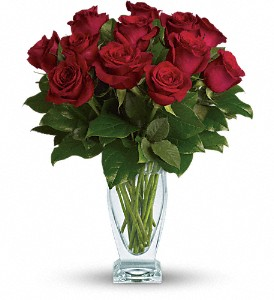 Teleflora's Rose Classique - Dozen Red Roses in Albany Area NY, A Touch of Country