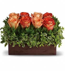 Teleflora's Uptown Bouquet in Holladay UT, Brown Floral