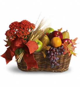 Fresh Picked in Fairfield CT, Glen Terrace Flowers and Gifts