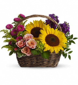 Picnic in the Park at The Glidden Campus Florist in DeKalb - Call to order: (815) 758-4455 / (800) 353-8222
