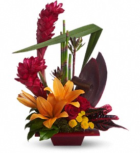 Teleflora's Tropical Bliss in Austintown OH, Crystal Vase Florist