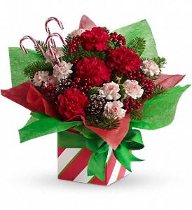 Teleflora's Christmas Present Perfect in Oklahoma City OK, Array of Flowers & Gifts