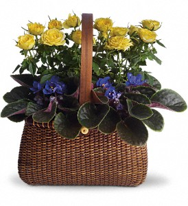 Garden To Go Basket in Plainview TX, Black Forest Floral