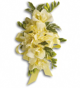 Let Love Shine Corsage in Raritan NJ, Angelone's Florist - 800-723-5078