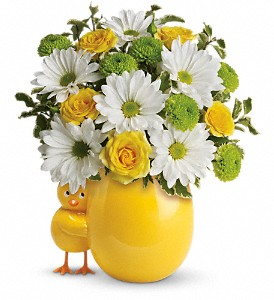 My Little Chickadee by Teleflora in Grand Rapids MI, Rose Bowl Floral & Gifts