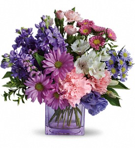 Heart's Delight by Teleflora in Hoboken NJ, All Occasions Flowers