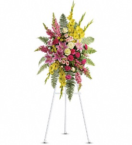 Rays of Light Spray in Newark CA, Angels 24 Hour Flowers<br>510.794.6391