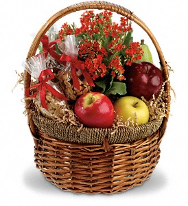 Health Nut Basket in Santa Claus IN, Evergreen Flowers & Decor