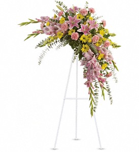 Sweet Solace Spray in Plano TX, Plano Florist