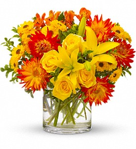 Summer Samba in Bend OR, All Occasion Flowers & Gifts