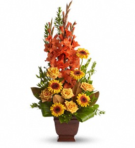 Teleflora's Sentimental Dreams in Peoria Heights IL, Gregg Florist