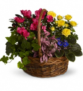 Blooming Garden Basket in Riverside CA, Mullens Flowers