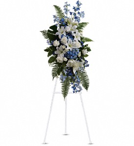 Ocean Breeze Spray in Fort Worth TX, TCU Florist