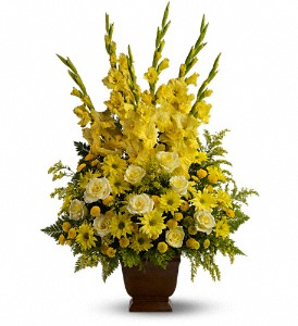 Teleflora's Sunny Memories in Ormond Beach FL, Simply Roses