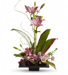 Imagination Blooms with Cymbidium Orchids in Herndon VA, Bundle of Roses